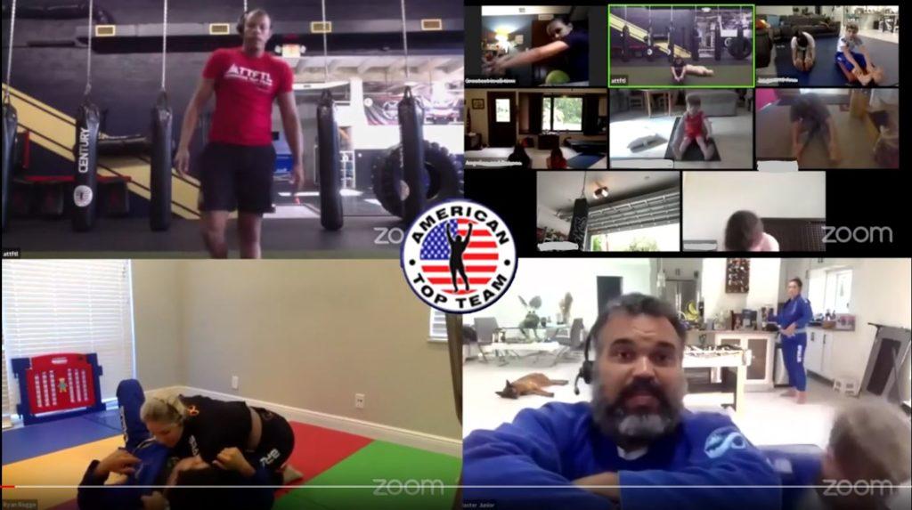 Virtual Martial Arts Training - example of classes